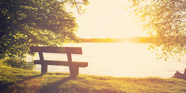 Bench by a lake