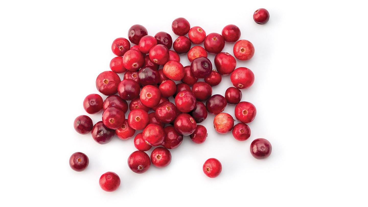Christmas Nutrition - Cranberries