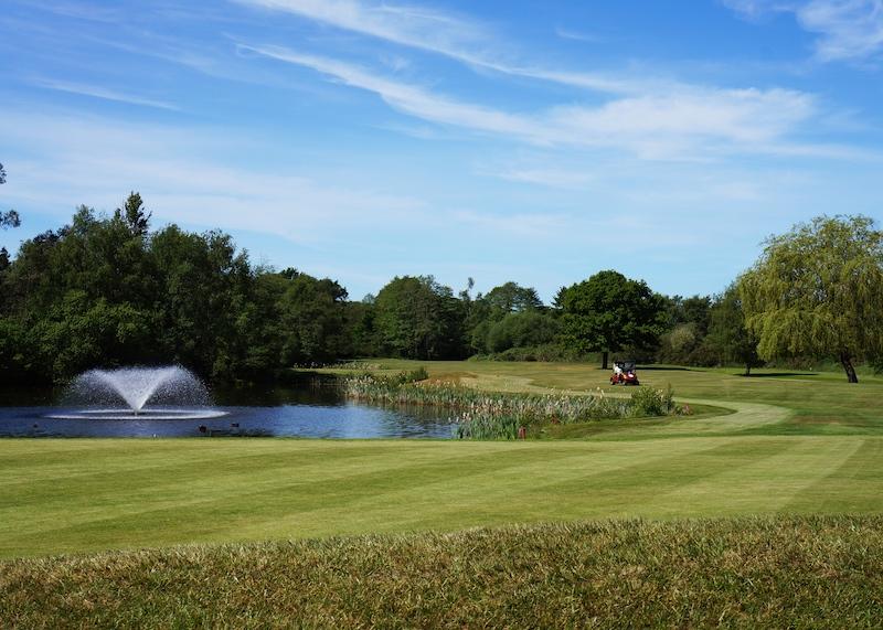 Golf1_web