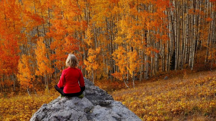 Hero_pic_-_girl_meditating