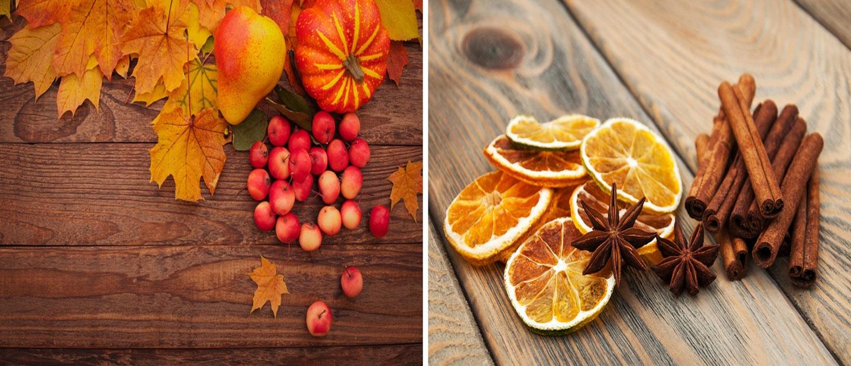 autumn-winter-website-banner
