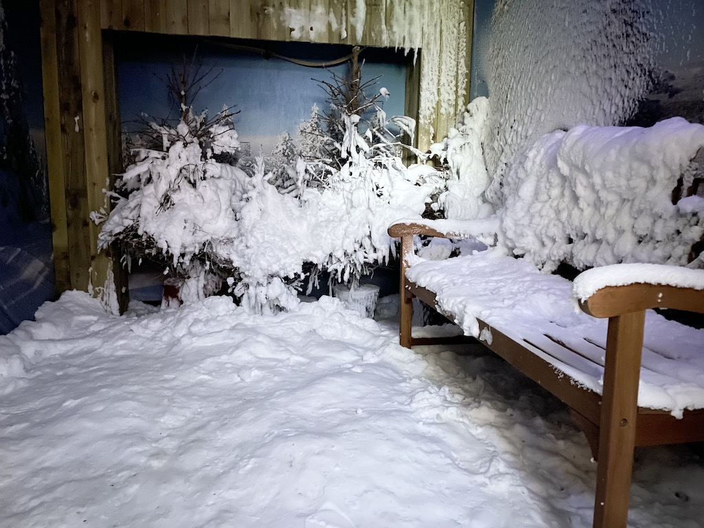 Sandpiper_snow_room_web