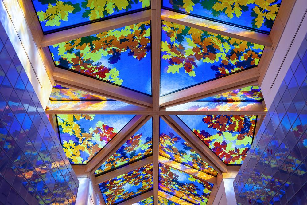 glass-skylight