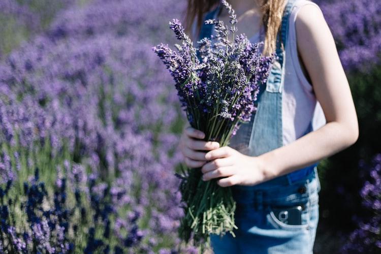 girl holding lavender