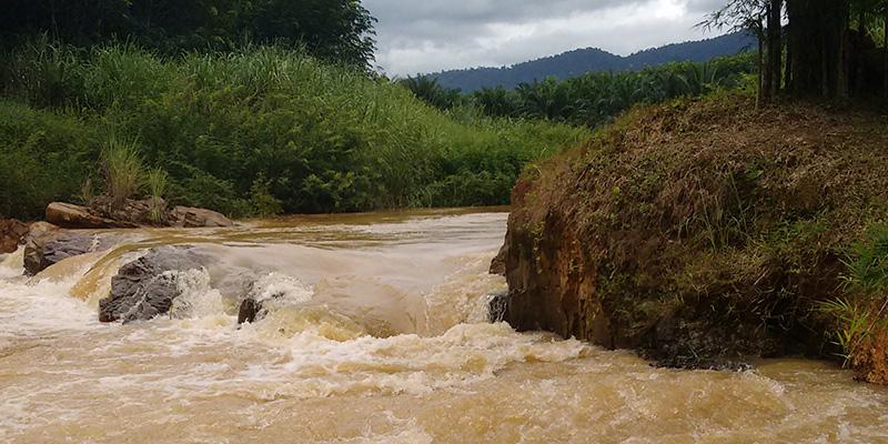 Rapids in the jungle