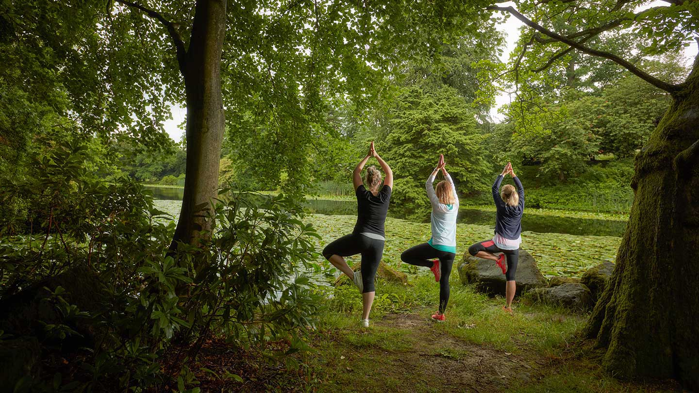 Three women standing in a yoga pose in between trees