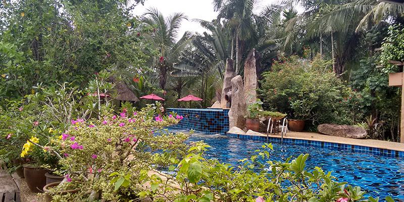 Blue tiled jungle pool